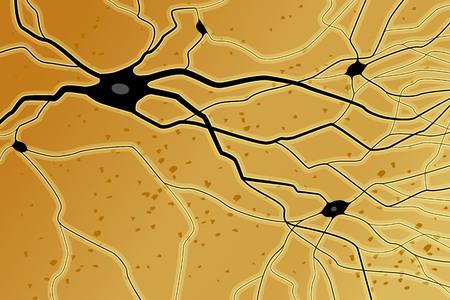 Nerve celles with axons, vector illustration, black on orange background