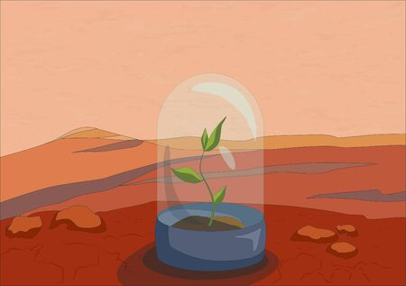 Green plants on red planet, Mars surface close up, vector illustration Illustration