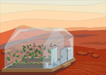 Green plants in greenhouse on red planet, Mars surface close up, vector illustration Illustration