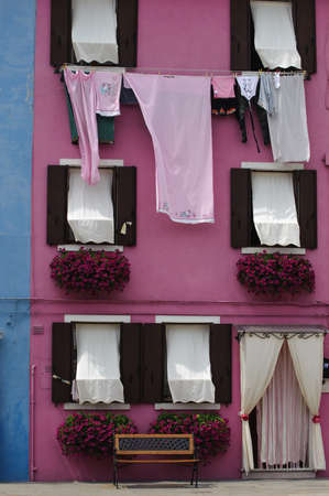 petunias: Pink Washing Hanging in front of a pink house with purple petunias Stock Photo