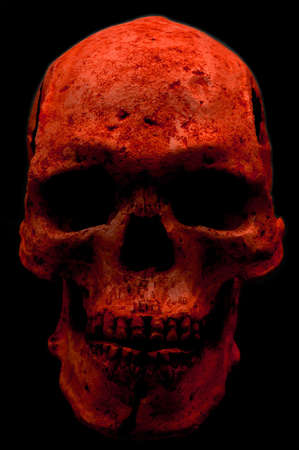 Red skull Stock Photo - 4154506