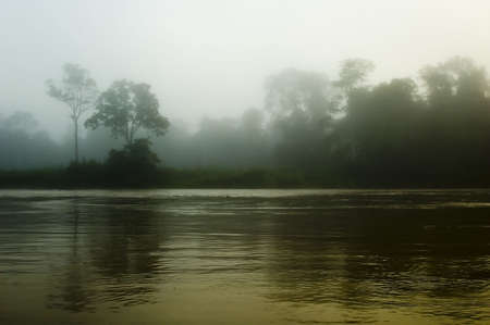Misty river Stock Photo
