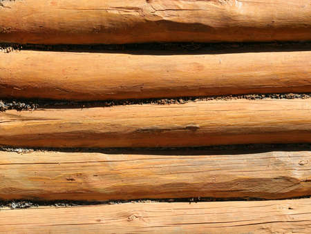 texture of old wooden logs photo