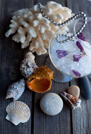 corall: seashells and coral on the wooden table Stock Photo