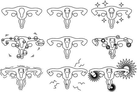 This is an illustration of a cute uterus.