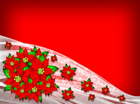 amore: Flower Poinsettia Christmas Background