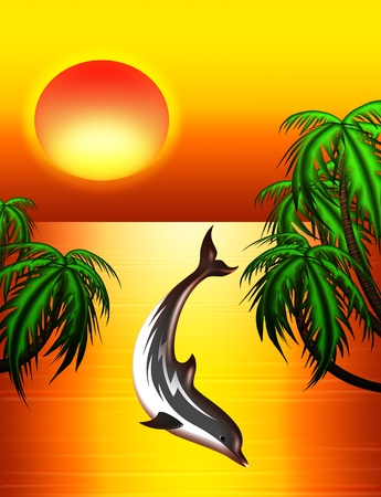 Dolphin on Tropical Sunset photo