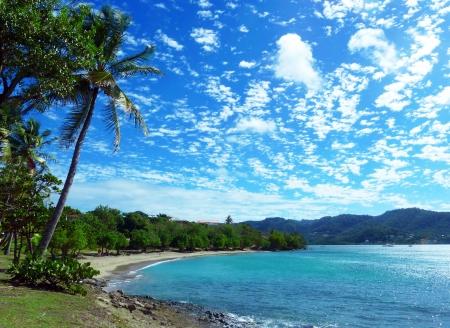 martinique: El Caribe en la tranquila playa de Martinica