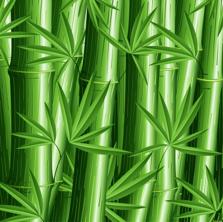 canes: Bamboo Pattern Background