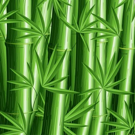 canne a sucre: Contexte Motif Bambou Illustration