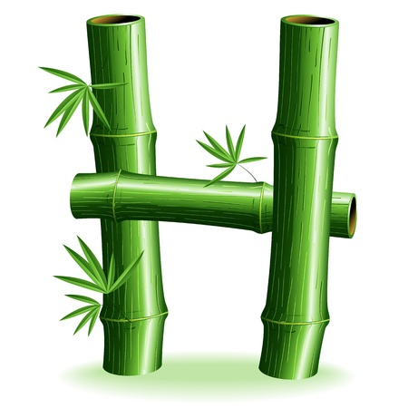 Bamboo Logo signent une lettre H