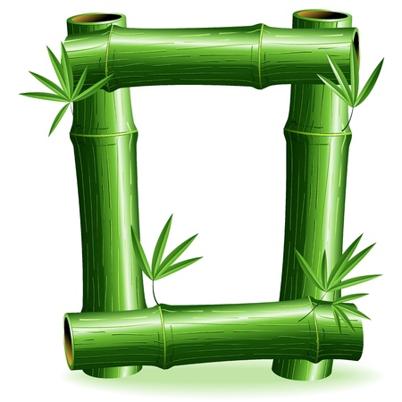 Bamboo Logo Letter Sign O Stock Vector - 14562270