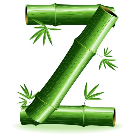 Bamboo Logo Letter Sign Z Vector