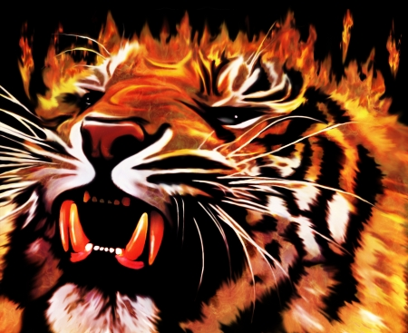 Fire Power Tiger Stock Photo - 16511384