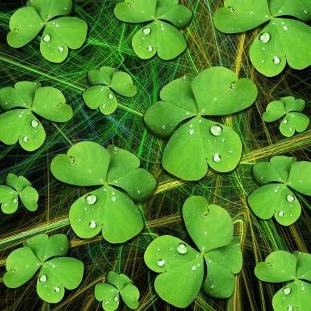 St Patrick Shamrock with Dew Pattern photo