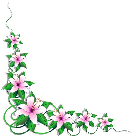 Pink Lily Lilium Flower Page Corner Decoration Vector