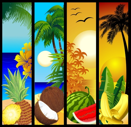 coconut water: Tropical Fruits and Seascape Banners Illustration