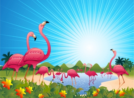 Pink Flamingos on Tropical Lagoon Illustration