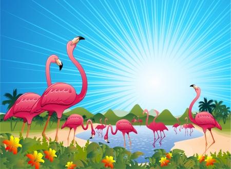 flamingos: Pink Flamingos on Tropical Lagoon Illustration