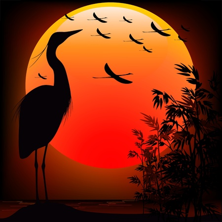 marsh plant: Heron Shape on Stunning Sunset Illustration