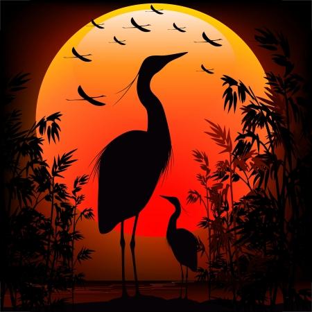 Heron Shape on Stunning Sunset Vettoriali