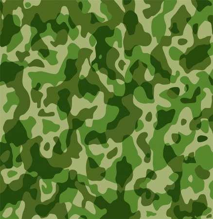 military background: Camouflage Army Military Texture Pattern