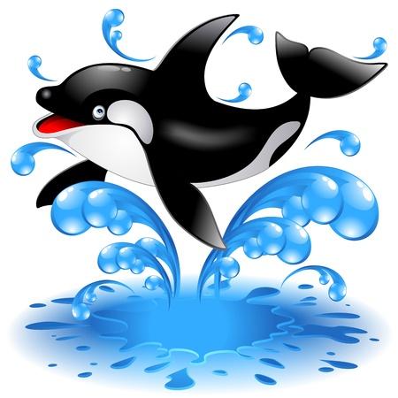 ballena: Feliz Salto Cartoon Whale Killer Vectores
