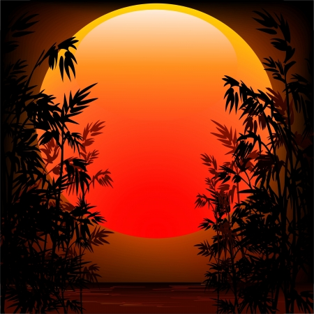 Bamboo Plants on Peaceful Sunset Vector