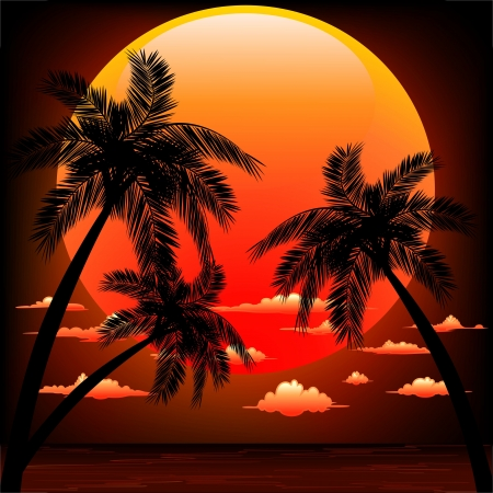 Red Sunset on Peaceful Tropical Seascape Illustration