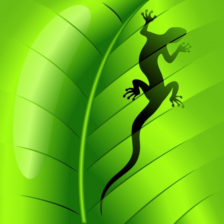 Lizard Gecko Shape on Green Leaf