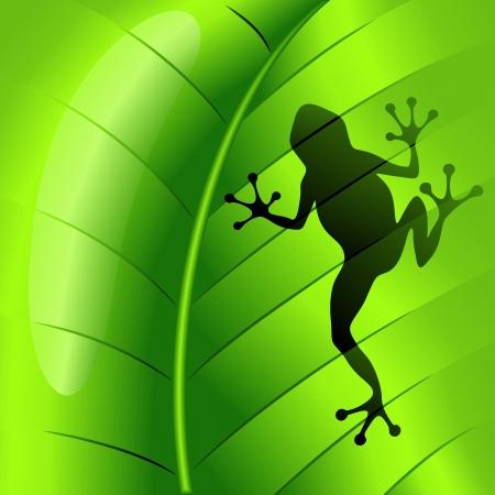 緑の葉にカエルの形  イラスト・ベクター素材