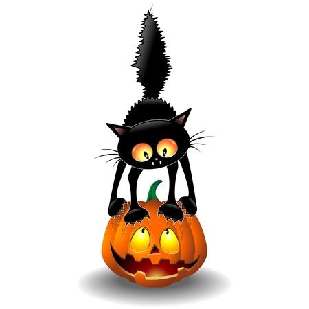 Scared Halloween Cat Cartoon scratching a Pumpkin
