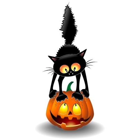 Scared Halloween Cat Cartoon scratching a Pumpkin Vector