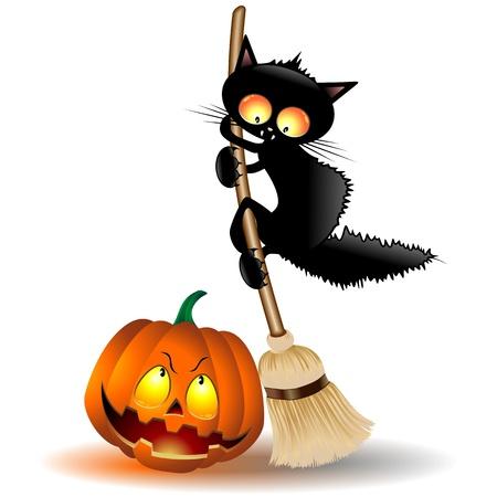 escoba: Gato de la historieta de Halloween en la escoba de bruja