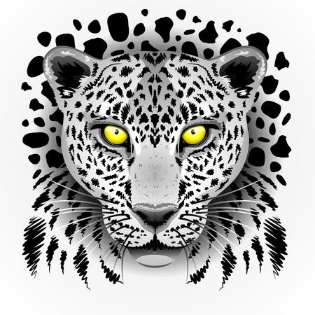 Leopardo blanco con los ojos amarillos Foto de archivo - 28558533