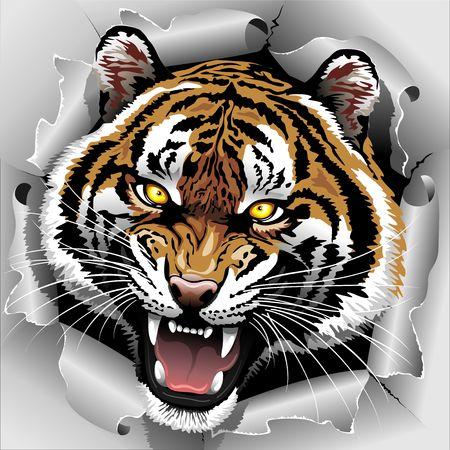 虎の咆哮引き裂かれた紙から出てくる