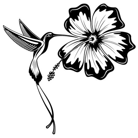 Hummingbird and Hibiscus Tattoo Vector
