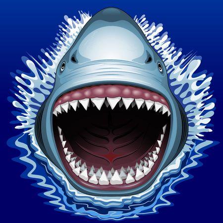 shark teeth: Shark Attack Tibur�n
