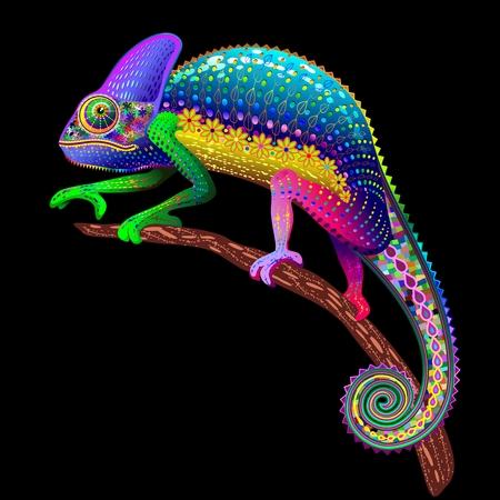 Chameleon Fantasy kleuren van de regenboog