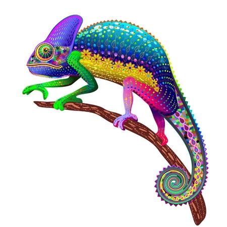 Camaleón Fantasy colores del arco iris Foto de archivo - 31960727