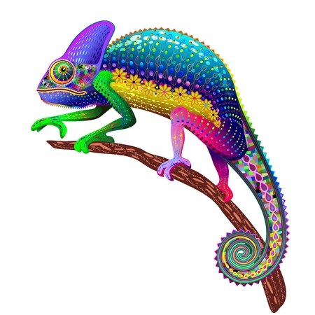 Chameleon Fantasy Rainbow Colors Stock Vector - 31960727