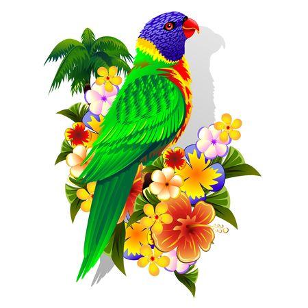 tropical flowers: Rainbow Lorikeet on Tropical Flowers