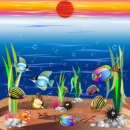 Sea life Underwater Colorful Fishes Illustration