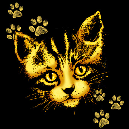 Cute Cat Portrait with Paws Prints Stock Photo