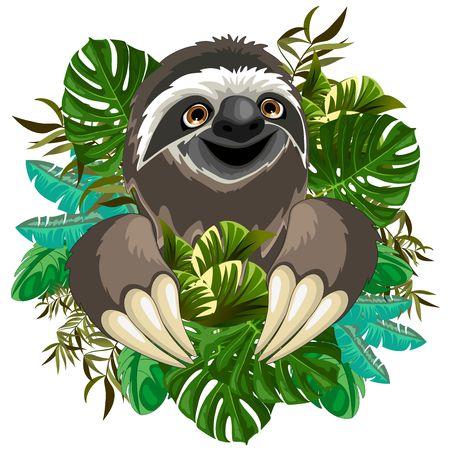 Sloth Cartoon on Tropical Jungle Illustration