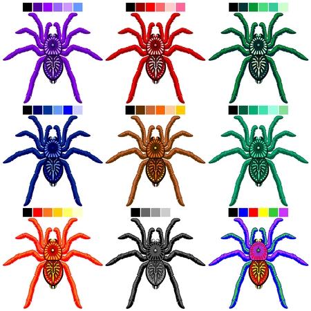 Spiders Tarantulas Set of 9 Colors Stock Illustratie