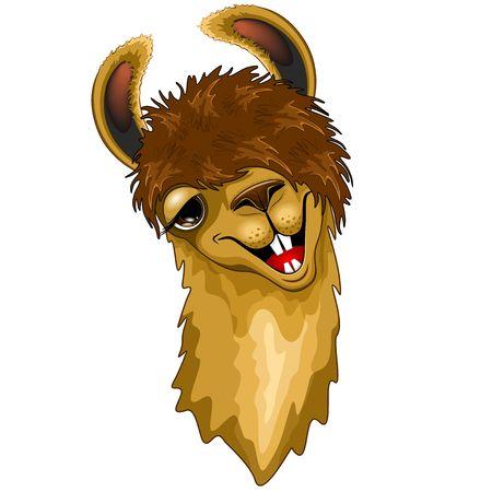 Llama Funny Happy Face Cartoon isolated on White Vector Illustration