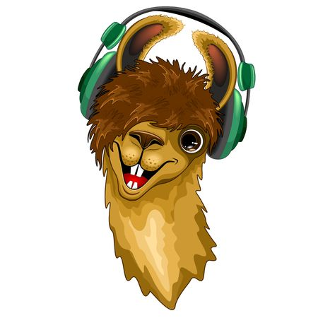 Llama Happy Music Dude with Headphones Vector illustration Illustration