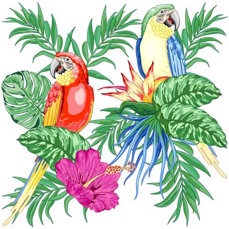 Macaws Parrots Exotic Birds on Tropical Flowers and Leaves Vector Illustration