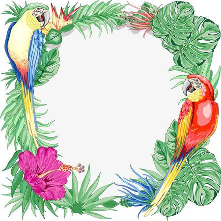 Macaws Parrots Exotic Birds Summer Nature Round Frame Vector Graphic Art
